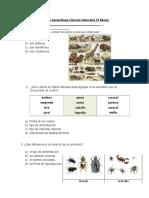 Guias De Aprendizajes Ciencias Naturales