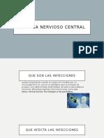 Sistema nervioso Central - Bio