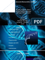 El Acido Desoxirribonucleico.pptx