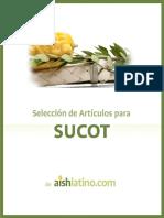 Articulos para Sucot.pdf