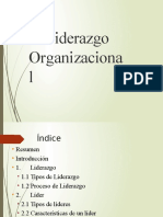 1 liderazgo organizacional