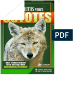 Myths_and_Truths_About_Coyotes_What_You_Need_to