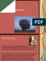 elaparatopsquico-111023133022-phpapp02