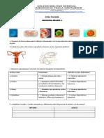 e0dfc8-2.pdf