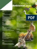 Calendario-Efemerides-2020 (1)