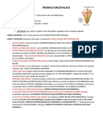 TRONCO ENCEFALICO (1).docx