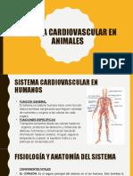 Sistema cardiovacular
