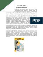 QUÉ ES EL OPEX.docx