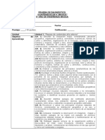 PRUEBA PRUEBA DIAGNOSTICO.doc