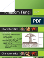 kingdomfungi-170304171711