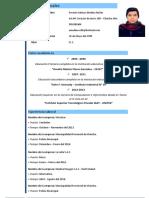 Mi C V (Chincha).pdf