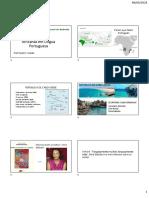 PDF Literaturas africanas - ANGOLA, Cabo verde e Moçambique
