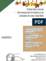 Producción y tasa de descomposición de hojarasca en acahuales de selva caducifolia en Chiapas