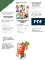 370436365-Folleto-Estilo-de-Vida-Saludable.docx