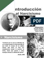 intro al narcisismo