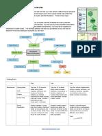 Create a Concept Map of Biomolecules