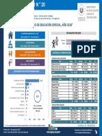 Boletin Estadistico N 20 - Censo de Educacion Especial Ano 2018