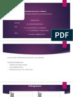 CAP 3. ANALISIS DE DATOS Y VARIOG( HISTOGRAMAS Y CORRELACIONES)