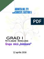 proiect_de_activitate_dlc.docx