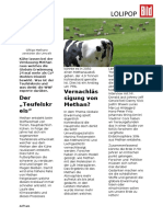 Kühe werden zu Klima Killer