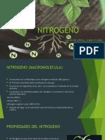 NITROGENO.pptx