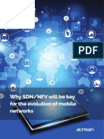 position_paper_sdn_nfv
