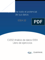 LTR_CI202 IDEA Data Analysis Workbook