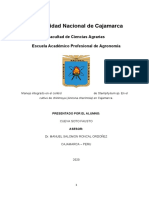 MIPE DE FITO2.docx