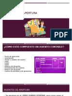ASIENTOS DE APERTURA (1)