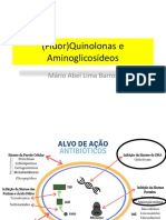Aminoglicosideos e Quinolonas