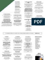 Tríptico misión a placilla.pdf