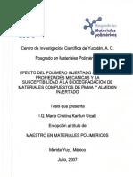 PMP_M_Tesis_2007_Maria_Kantun_Uicab.pdf