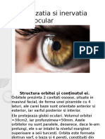 Vascularizatia si inervatia globului ocular