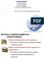 Aula 5  Sistema de endomembranas