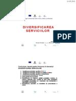 Diversificarea Serviciilor - FINAL 2007 - 2010