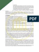 SISTEMA URINARIO.pdf