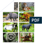 hewan & tumbuhan langka