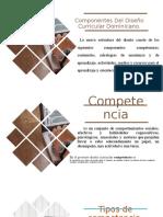 Resumen Del Curriculo Por Competencia