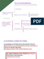regulacionEnzimatica_35042.pdf