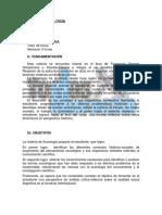 10.A- SOCIOLOGÍA, De Santis Gerardo