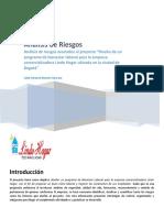 Análisis de Riesgos - Leidy Moreno Guevara.docx