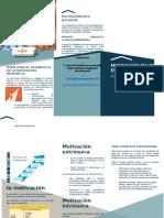 folleto habilidades gerenciales