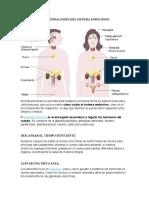 RECOMENDACIONES DEL SISTEMA ENDOCRINO.docx