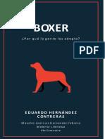 BOXER DEFINITIVO