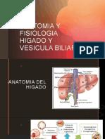 TRAS-Higado y Bilis.pptx