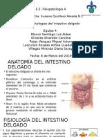TRAS-Int.Delgado.pptx