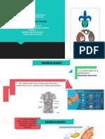 TRAS-Pancreatitis.pptx