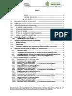 DECLARACION DE IMPACTO AMBIENTAL AMAZONAS. 09.09.19.pdf