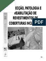 16 Insp_pato_reab_cobert_inclinada_pb