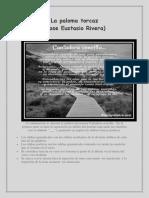La paloma torcaz (1).pdf